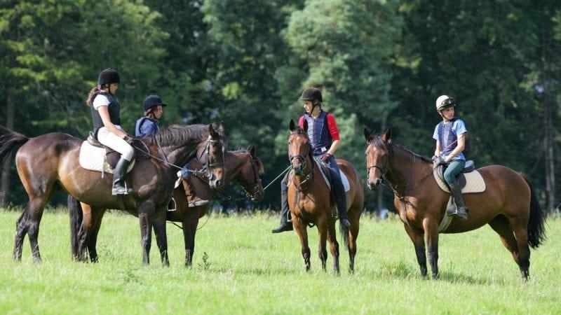 campi estivi 2 vacanze studio summer camps camp equitazione inglese Viva International