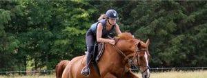 vacanze studio summer camp equitazione Crossogue cavallo VIVA International