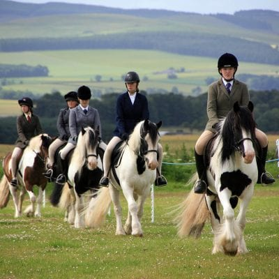 summer camp vacanze studio inghilterra viva international horse riding