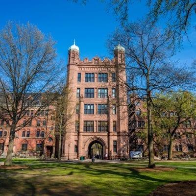 vacanze studio Yale University VIVA international