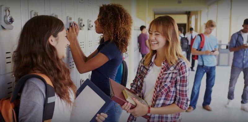 anno all'estero student exchange VIVA